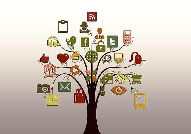 social tree
